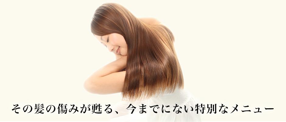 その髪の傷みが甦る、今までに無い特別メニュー